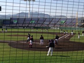 WBC in 宮崎